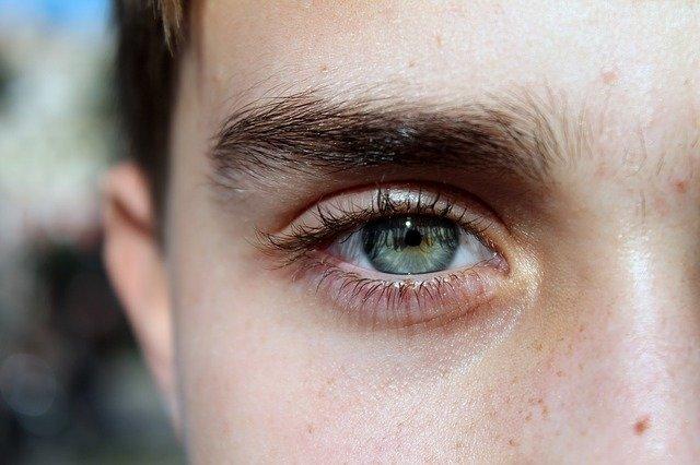 Генетики узнали, что на цвет бровей влияет 9 генов