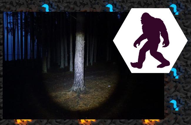 Феномен невидимых йети