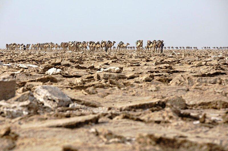 Долина смерти в Эфиопии: как выглядит одно из самых безжизненных мест на планете природа