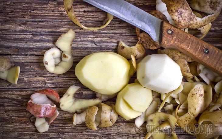 Как использовать удобрение из картофельных очистков на огороде