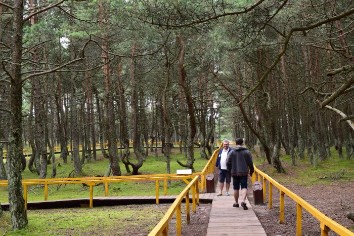 Туристов просят ходить только по специальным дорожкам. /Фото:d-cd.net