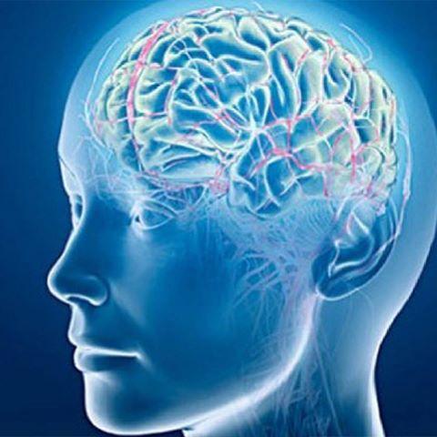 Атеросклероз сосудов головно…