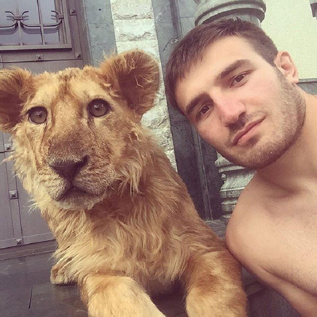 В качестве домашнего животного борец из Нальчика завел дикого льва