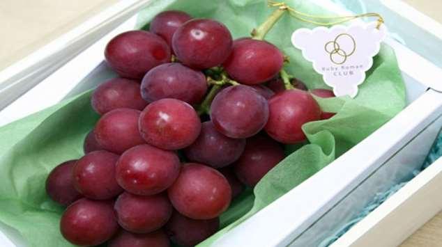 Самый дорогой в мире сорт винограда