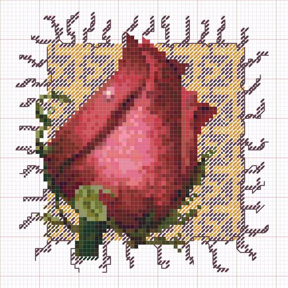 схема-вышивки (11) (567x567, 452Kb)