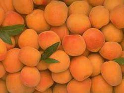 Хочешь сохранить загар? Ешь абрикосы!