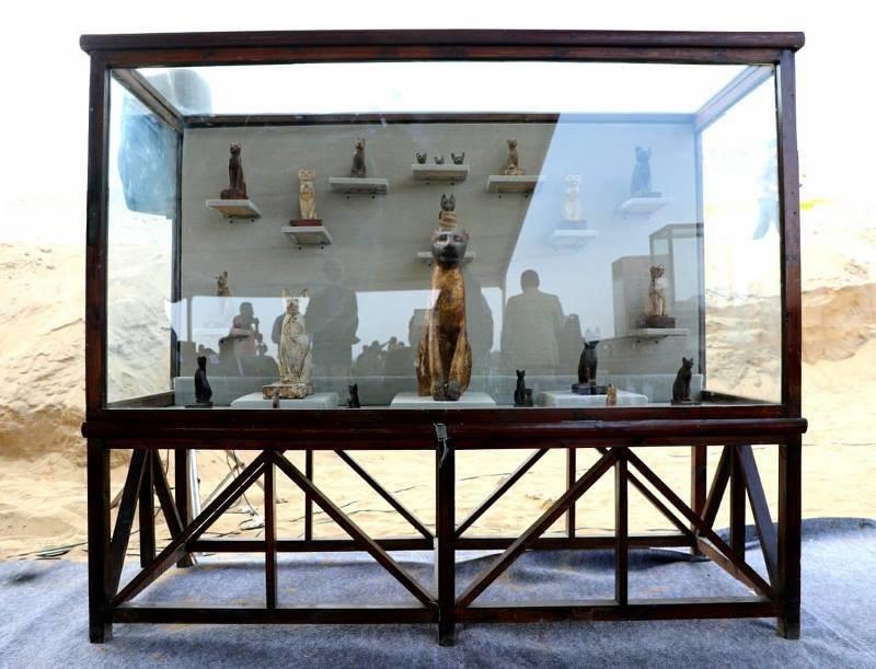 Наряду с мумиями кошек были обнаружены позолоченные статуи кошачьих, в том числе бронзовая статуя, посвященная богине-кошке Бастет Египт, в мире, гробницы, кошки, мумия, находка, пирамиды
