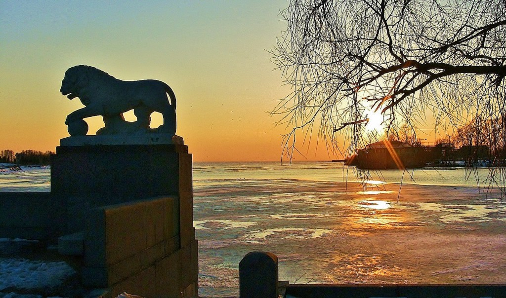 финский залив в питере фото операции