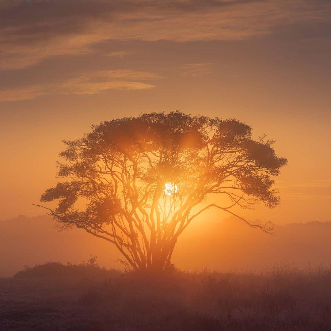 Фотограф Альберт Дрос колесит по свету и делает поистине магические снимки пейзажи,планета,тревел-фото