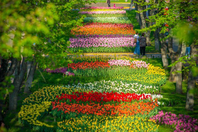 Гид по Украине: куда поехать весной
