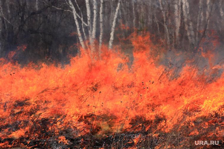 Полковник запаса: пожар на складе под Рязанью мог быть диверсией. «Против нас ведется война»