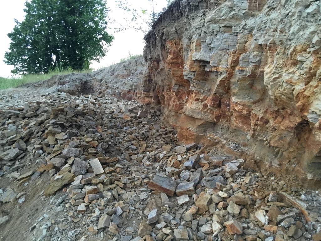 Как проходят раскопки палеонтологов