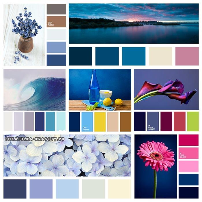 сочетание цветов в картинках синий родители самом