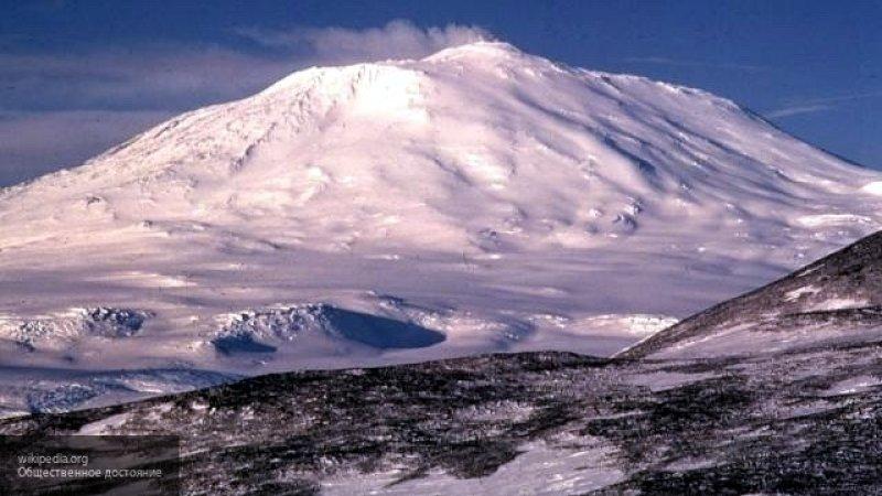 Мозг полярников уменьшился после долгой работы в Антарктиде