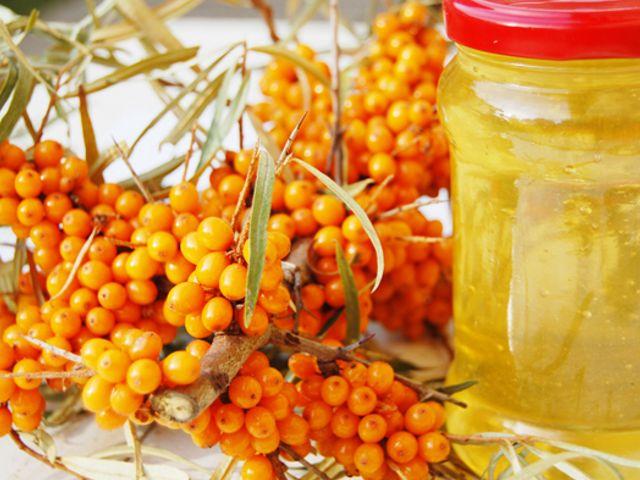 Целебные свойства облепихи— природный кладезь витаминов для здоровья и красоты. Облепиха: польза и вред для здоровья человека