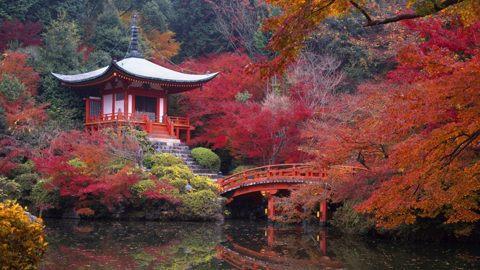 Nature___Seasons___Autumn_The_autumn_comes_to_Japan_046321_ (800x493, 519Kb)