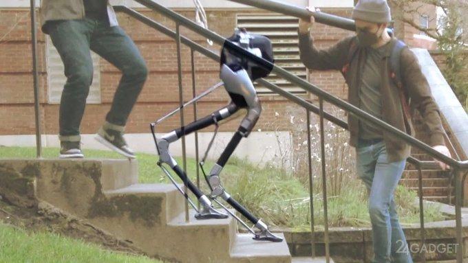 «Слепой» робот Кэсси теперь умеет ходить по лестнице