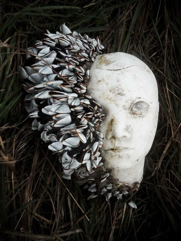 14. «Шторм прибил это к французским берегам» в мире, вещи, интересно, находка, пляж, удивительно