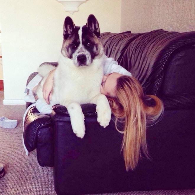 «Шестое чувство Кеолы»: собака вынудила хозяйку отправиться в больницу и не ошиблась истории из жизни