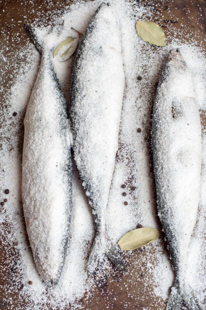 Как засолить скумбрию для горячего копчения: рецепт