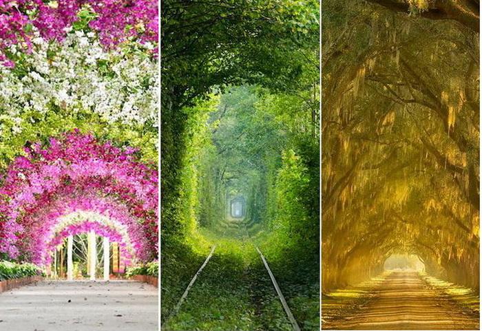 Природные тоннели. Самые очаровательные места на планете.