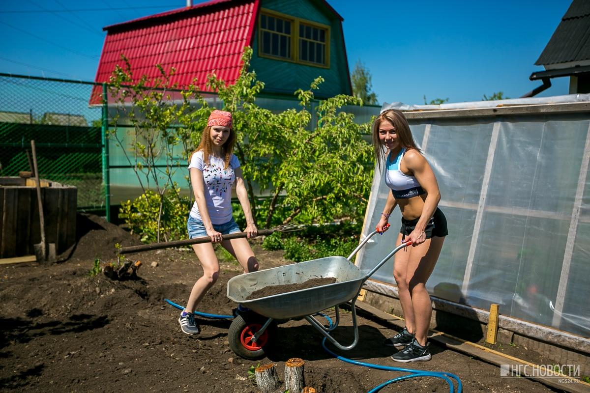 продаже загородных летом на даче с женой фото груши заречная