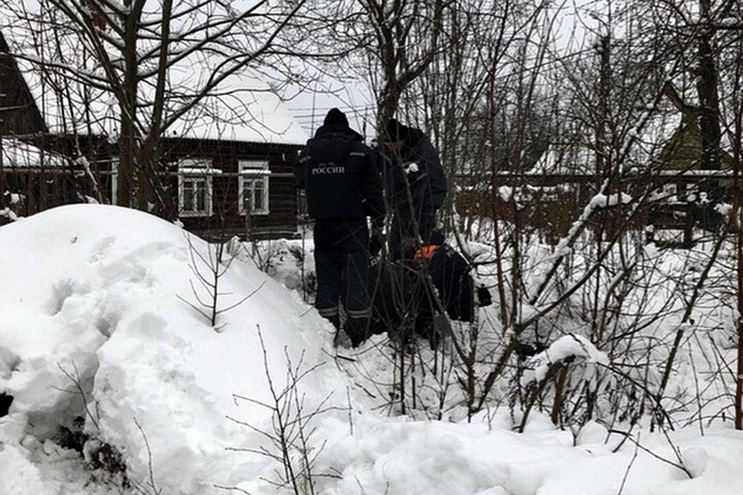 Сотрудники смогли пробить в подвал отверстие, через которое и спасли щенков. Фото: Елена Зиновьева.