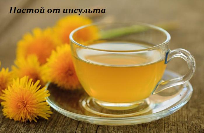 2749438_Nastoi_ot_insylta (700x456, 354Kb)