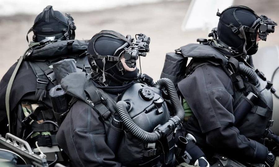 Боевые пловцы польской «Формозы»