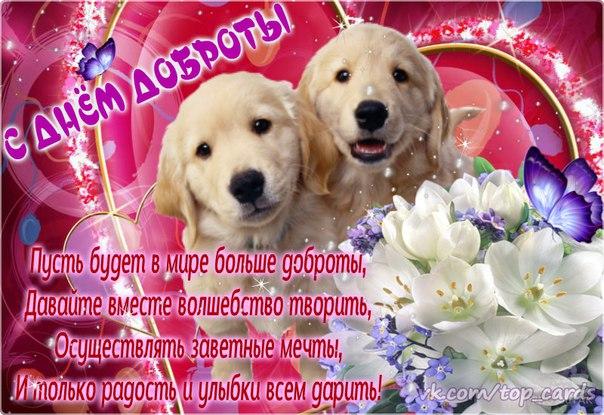 http://mtdata.ru/u2/photo9B51/20560547229-0/original.jpg#20560547229