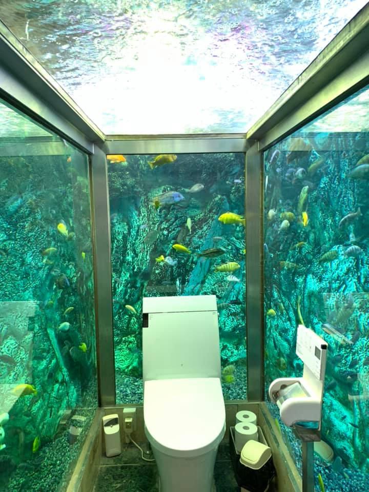 Этот японский туалет знаменит на весь мир. Сейчас вы поймете, почему страны,туризм