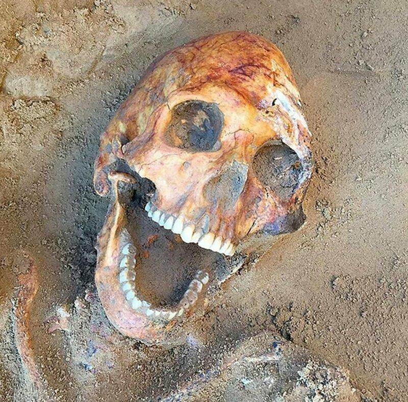 """Останки """"смеющегося"""" мужчины с искусственной деформацией черепа Астрахань, Сармат, археология, драгоценность, захоронение, находка, россия"""