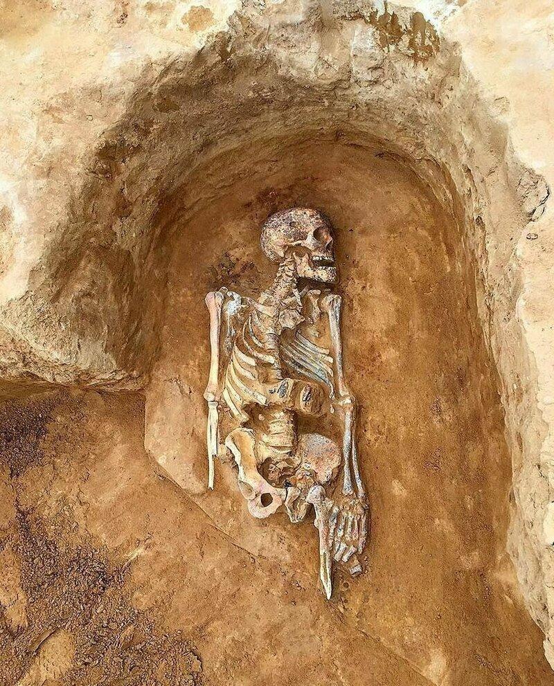 Могила пожилого мужчины, с ним была похоронена голова его лошади Астрахань, Сармат, археология, драгоценность, захоронение, находка, россия
