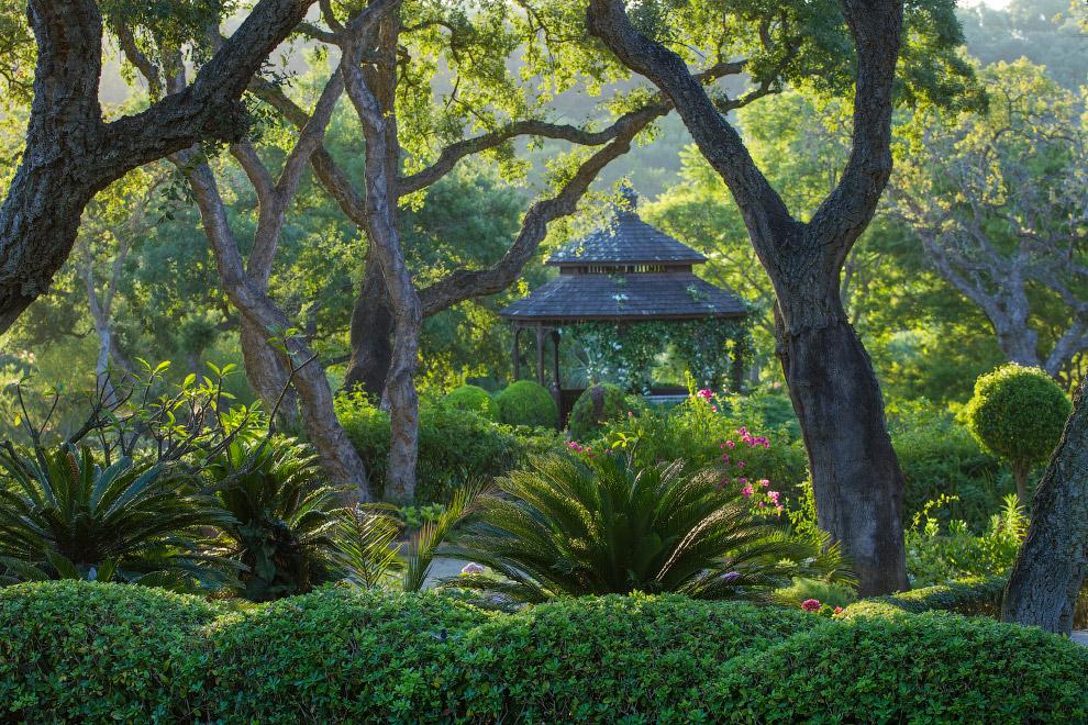 Лучший садово-парковый фотограф года