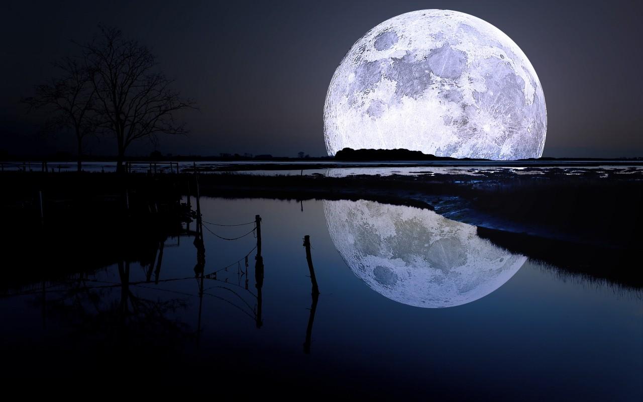 Луна и щука