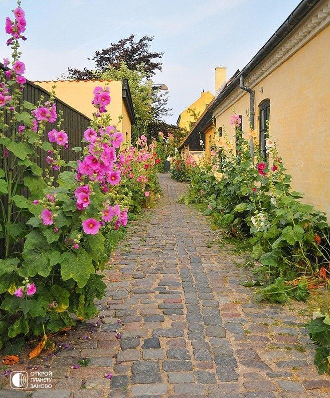 Симпатичная деревня с желтыми домиками - Драгёр