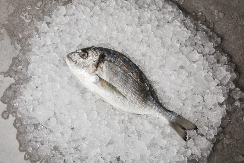 правильно жарить рыбу в кляре