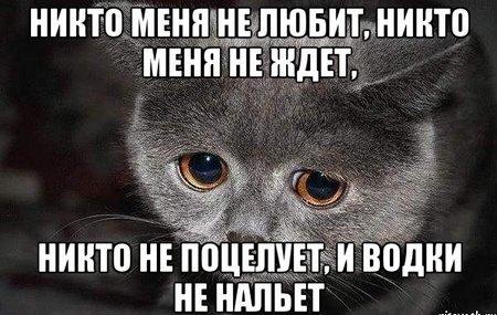 Я не любим никем... Георгий Иванов