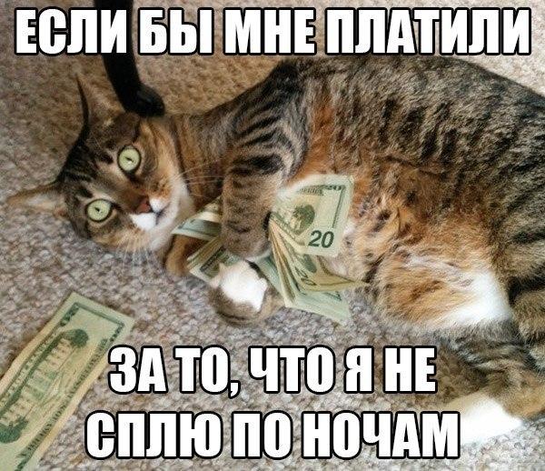 белая зарплата