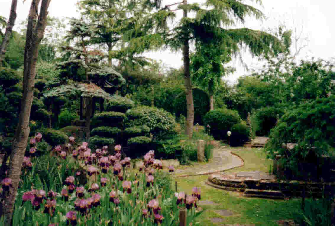 Зрелый сад.