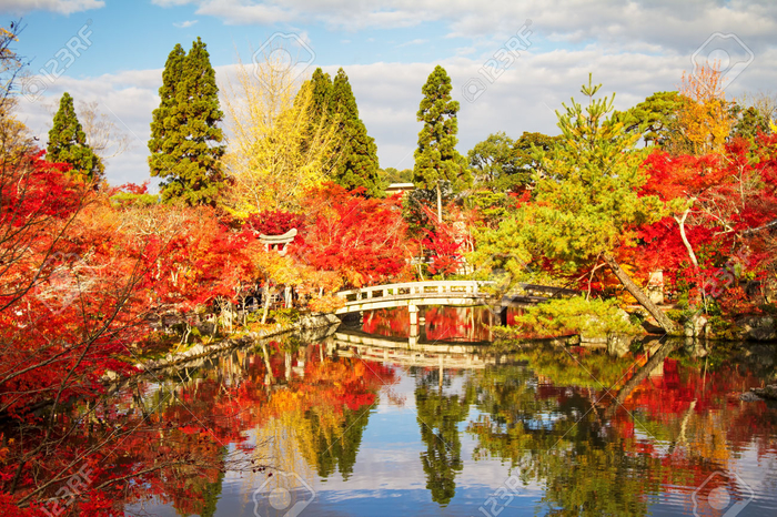 29088457-Kyoto-Japan-November-26-2013-Autumn-Japanese-garden-with-maple-Stock-Photo (800x566, 607Kb)