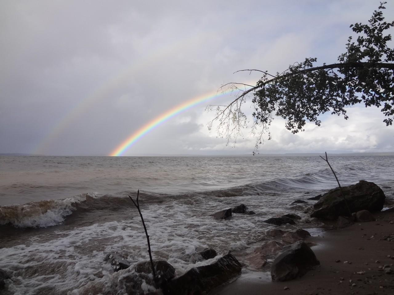 Пусть вновь взойдет над миром радуга!