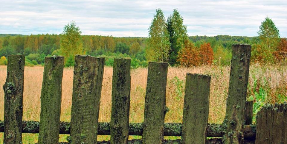 Деревня Боярщина. Часть III. Осень брошенного дома... деревень, большие, Очень, будто, деревьев, вокруг, деревню, этого, поскорее, хотелось, города, видеть, совсем, стало, обойти, людей, ветер, здесь, часть, Осень