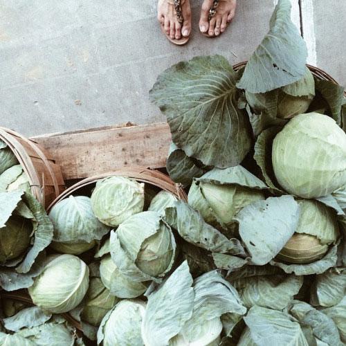 Как сделать овощи и фрукты чище и лучше