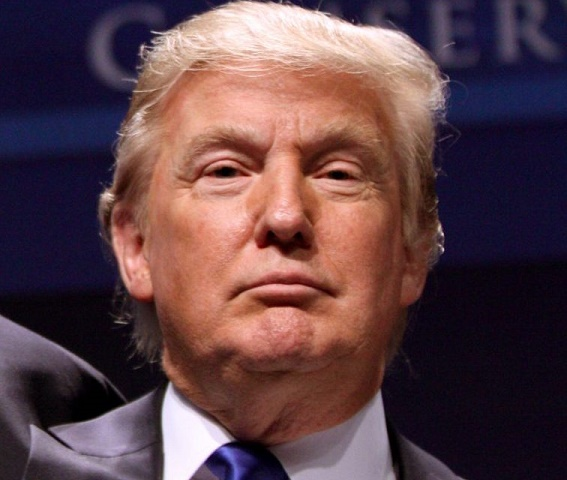 Что означает фамилия «Трамп»
