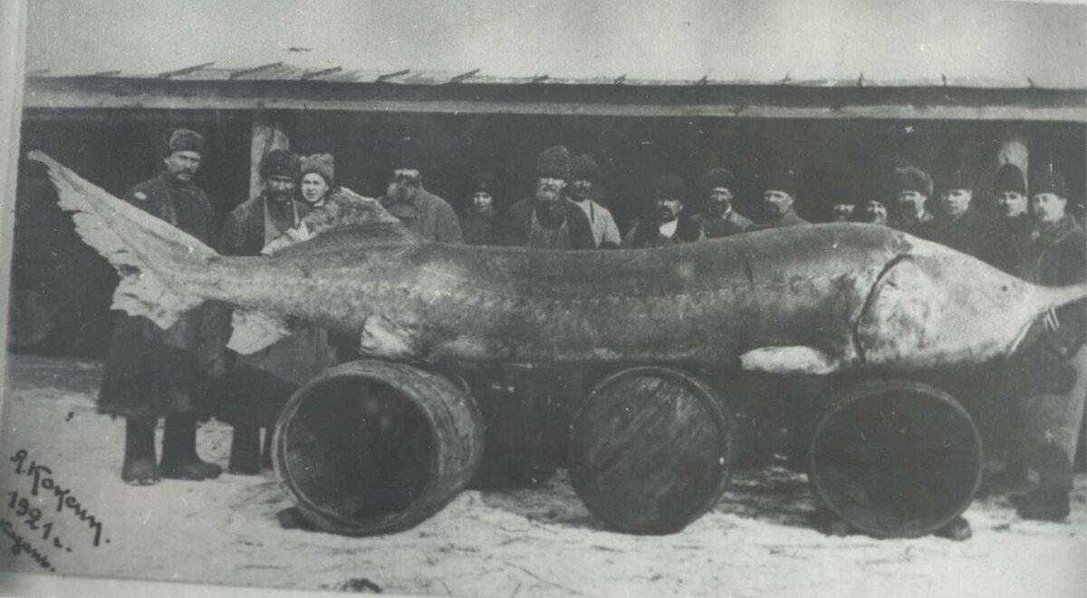 1921 год. Фото взято из открытых источников.