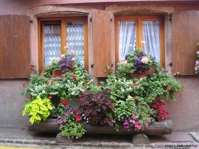 Чем помыть окна, чтобы не потели домоводство