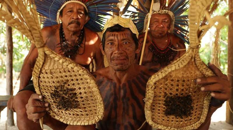 12. Сатере-маве, Бразилия - перчатки из муравьев-пуль мир, ритуал, странность