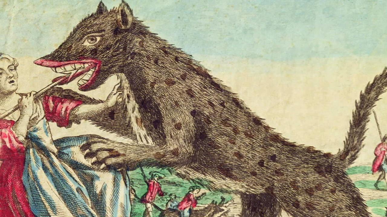 Жеводанский зверь (рассказывает историк Егор Бондаренко)