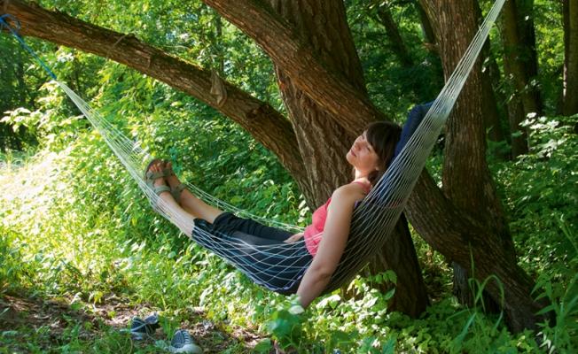 Отпуск на даче с пользой для здоровья